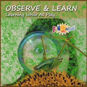 OBSERVE-AND-LEARN